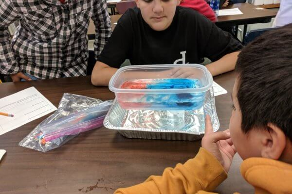 Students working at tables observing containers of water with red and blue food coloring.
