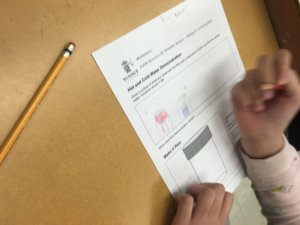 Student fills out a worksheet.