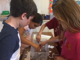Students working at a cluster of desks and looking into a clear plastic container.