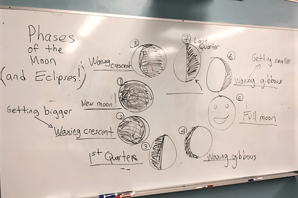White board showing the phases of the moon.