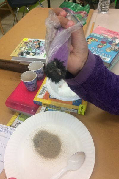 Students use a magnet to remove iron fillings from a mixture.