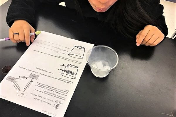 Student looking at a cup of dry ice while filling out a worksheet.