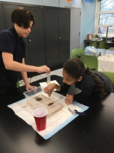 Students investigate model oil spells in table top containers of water.