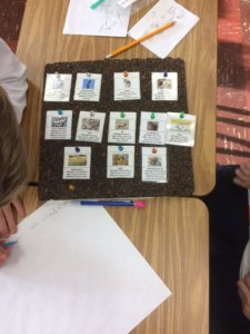 Students arrange cards to create a food web on a cork board.