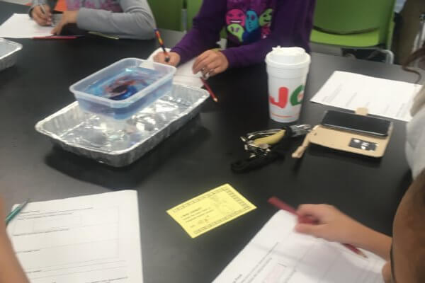 Students observe how water different temperature water behaves using food coloring.