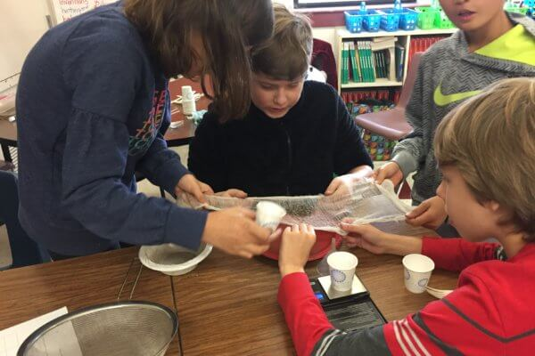 Students use cheesecloth to separate a mixture.