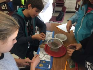 Students sift sand out of a mixture onto a plastic plate using a strainer.