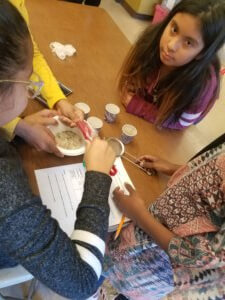 Students use a magnet to separte a mixture of sand, rice and iron fillings.