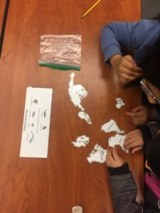 Students work with puzzle pieces to create Pangea.
