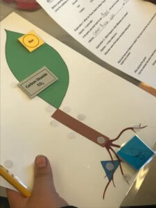 A photosynthesis game care with water, carbon dioxide and sun attached to it.
