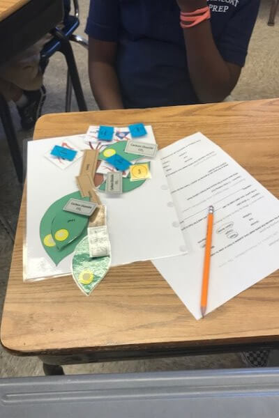 A photosynthesis game card and worksheet are shown.