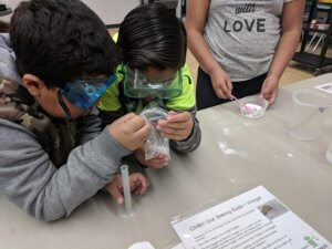 Students look in a plastic bad at a chemical reaction.