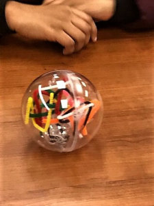 A model with a hard plastic clear shell and pipe cleaners inside.