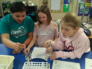Students watch a chemical reaction occur.