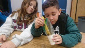 Student use a magnet in a cup to separate a mixture.