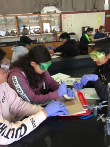 Students wearing googles and gloves dissect a sheep heart.
