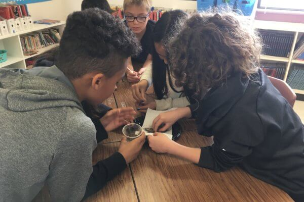 Students cluster around a plate where they are investigating soils.