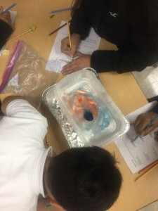 Students observe how hot and cold water interact to model weather fronts.