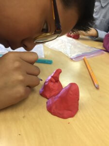 A student sculpts a mountain from clay.