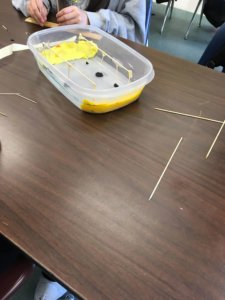 Students build model bridges in a container.