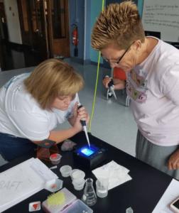 Teachers work on electrophoresis.