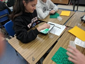 Student selecting beads from a container as part of the Camouflage lesson.