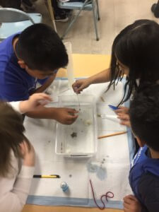 Students clean up a model oil spill.