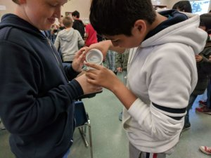 A student adds a liquid to another students cup.