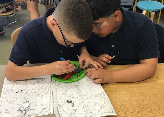 Students compare their dissected owl pellets to a chart